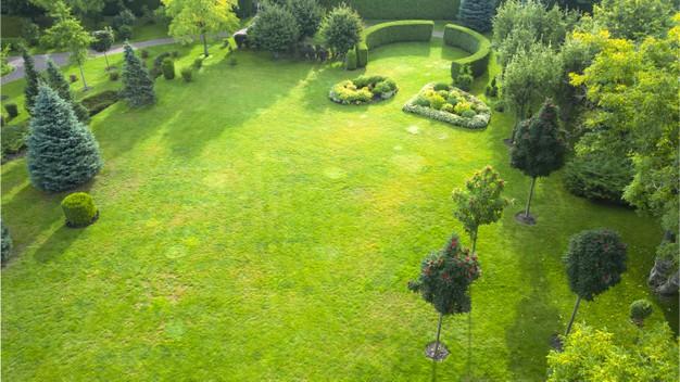 Profesjonalne zakładanie ogrodu
